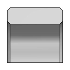 SDW DF101 Kolbenlippenring