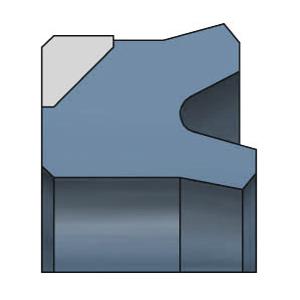 SDW DK102 Kolbenlippenring