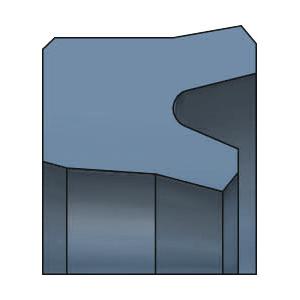 SDW DS101 Kolbenlippenring