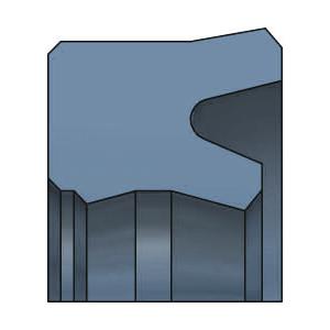 SDW DS1117 Kolbenlippenring