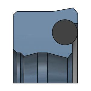 SDW DS125 Kolbenlippenring